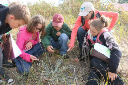 Northeast Michigan Great Lakes Stewardship Initiative (NEMIGLSI) students and instructors in a field.