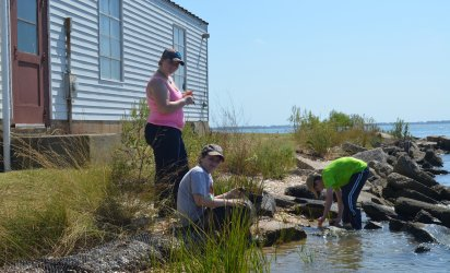 Three students on a shoreline. Wetlands grassses in the foreground, the shore stretches at an angle from the lower left of the photo to the mid-right. Large rocks jut up at sharp angles along the shore, and various grasses and shrubs grow alongside them. One student is wading in the water, collecting a sample. A second student sits on the bank, while a third stands above him smiling at the camera.